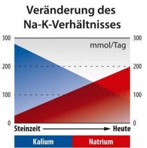 k-na_steinzeit